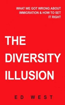 omslag.diversity illusion