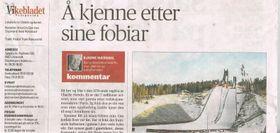 Vikebladet 1