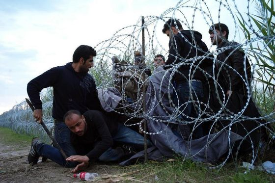 Syrian refugees cross into Hungary underneath the border fence on the Hungarian - Serbian border near Roszke, Hungary on Aug. 26, 2015. The number of refugees entering Hungary has reached a new high as the government hurries to build a 4-meter (13-foot) fence on the Serbian border to stop them. More than 140,000 migrants have reached Hungary on routes across the Balkans so far in 2015. Recently, some 80 percent of them are from war zones like Syria, Iraq and Afghanistan. (AP Photo/Bela Szandelszky)