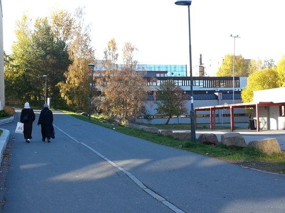 Kleskodene er i følge politikere kun en annen måte å være norsk på.