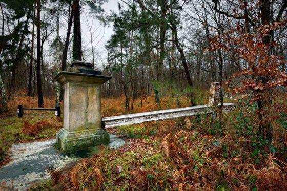 Fontainebleau Cross