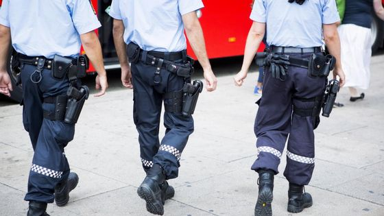 bevæpnet politi