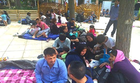 migrants5