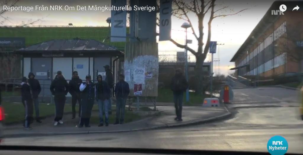 NRK reportasje fra Husby3