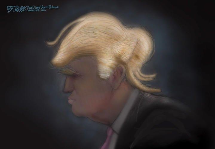 trump.hair