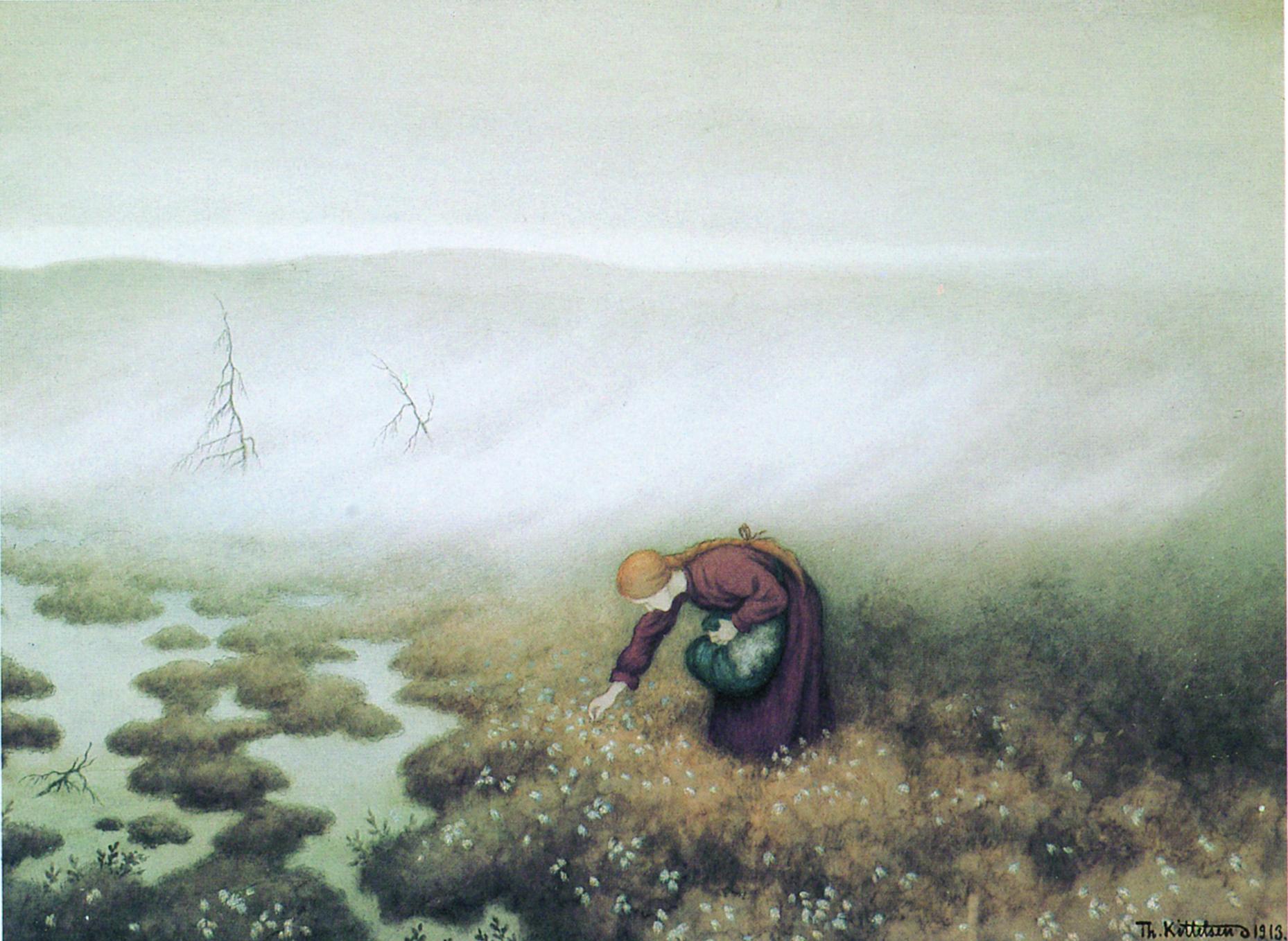 Prinsessen-plukker-myrull-1913-Privat-eie1
