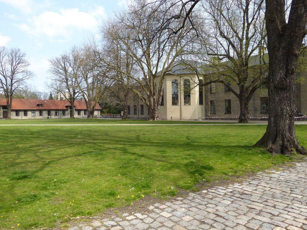 frederiksberg_campus_gronnegarden_lawn