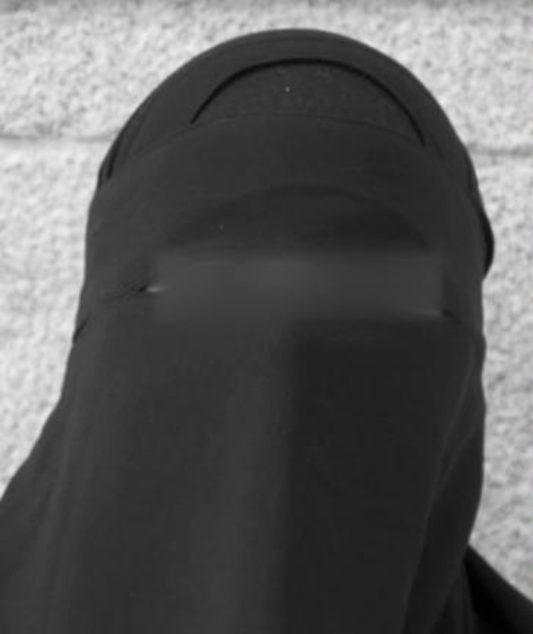 Aisha Shezadi Jeg Har Ikke Gjort Noe Straffbart