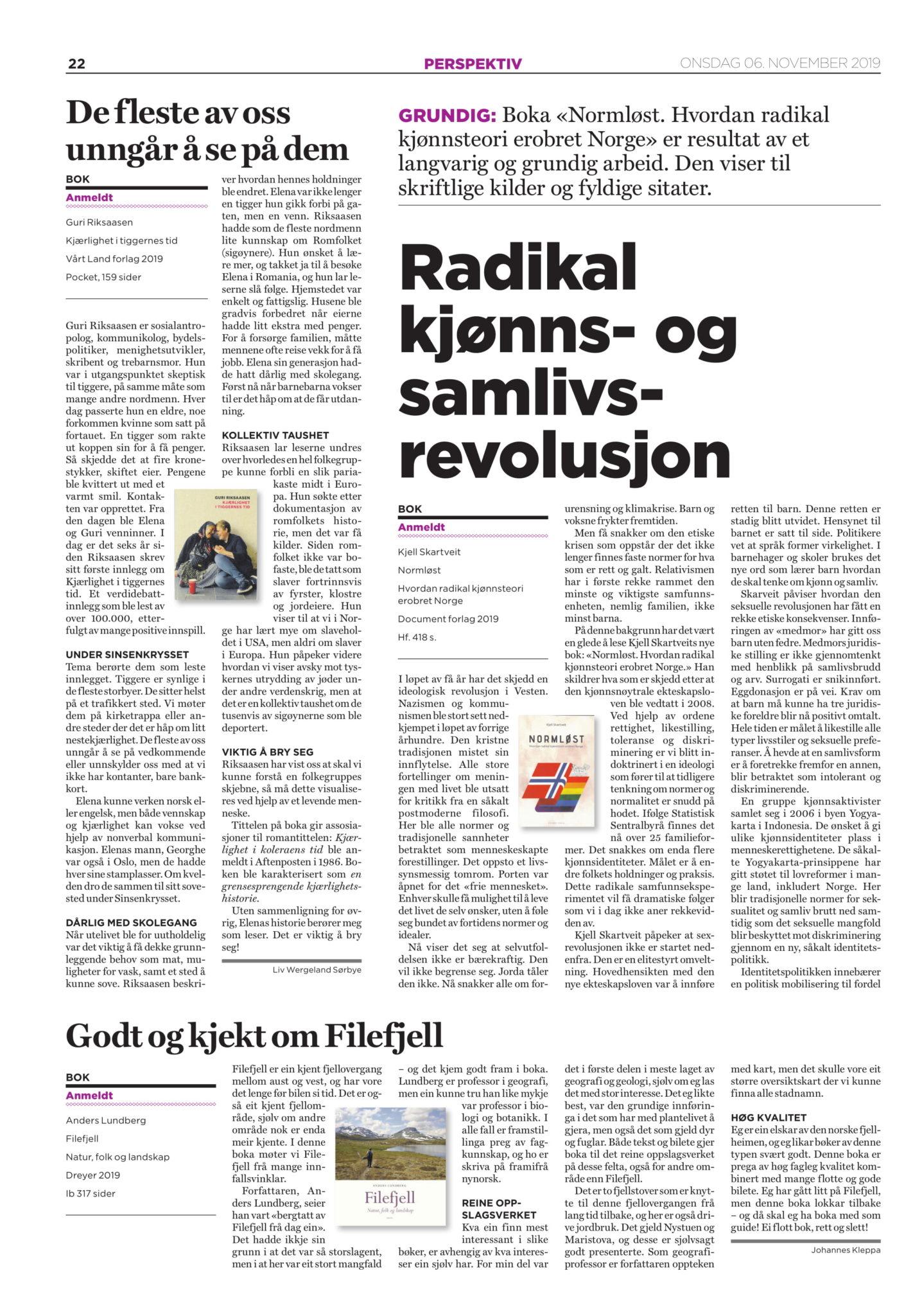 Normløst anmeldt i Dagen, side 22